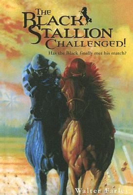 Black Stallion Challenged!