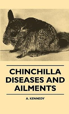 Chinchilla Diseases And Ailments