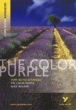 York Notes on 'the Color Purple' by Alice Walker
