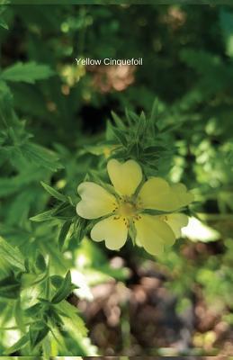 Yellow Cinquefoil Journal / Planner