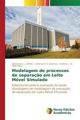 Modelagem de processos de separação em Leito Móvel Simulado