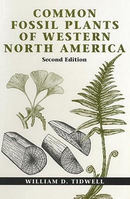 Common Fossil Plants of Western North America