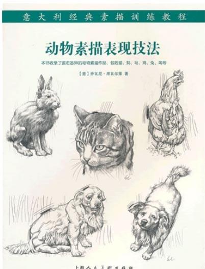 动物素描表现�...