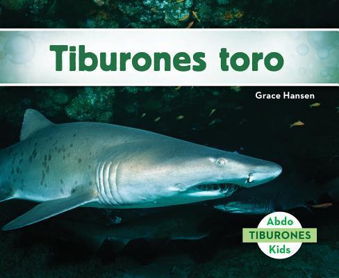 Tiburones toro / San...