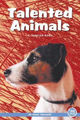 Talented Animals