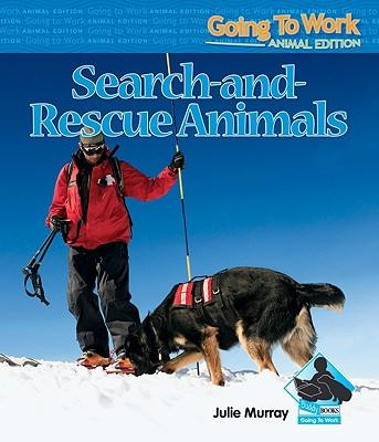 Search-and-Rescue An...