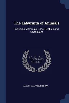 The Labyrinth of Animals