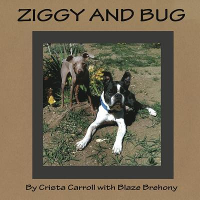Ziggy and Bug