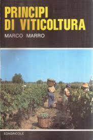 Principi di viticoltura