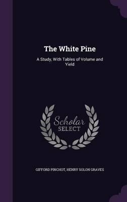 The White Pine