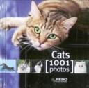 Cube Book Cats 1001 ...