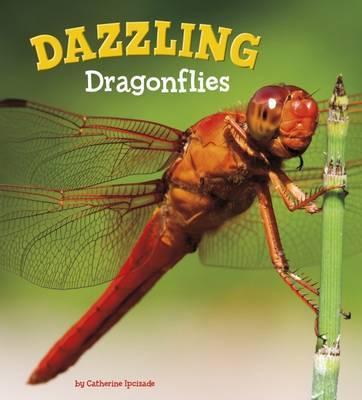 Dazzling Dragonflies (A+ Books
