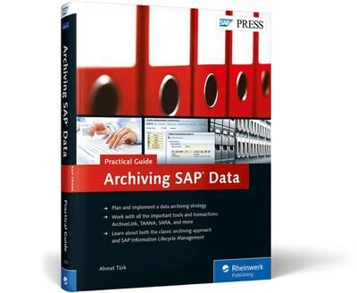 Archiving Sap Data—practical Guide