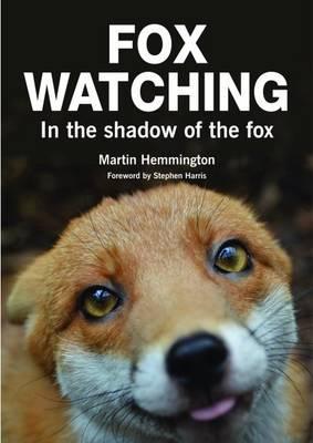 Fox Watching