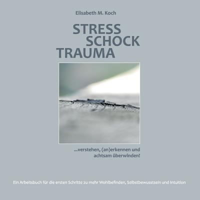 Stress Schock Trauma ... verstehen, (an)erkennen und achtsam überwinden