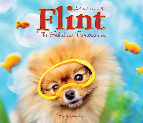 Adventures With Flint the Fabulous Pomeranian