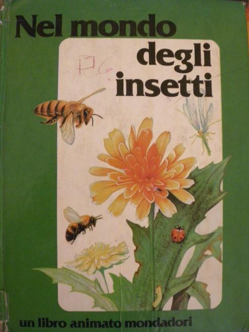 Nel mondo degli insetti