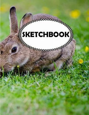 Rabbit Sketchbook