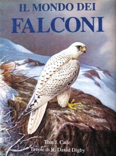 Il mondo dei falconi