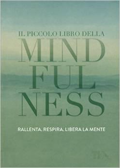 Il piccolo libro della mindfulness