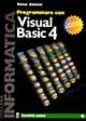 Programmare con Visual Basic 4