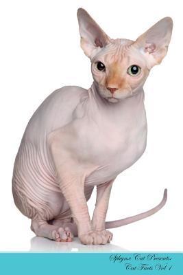 Sphynx Cat Presents
