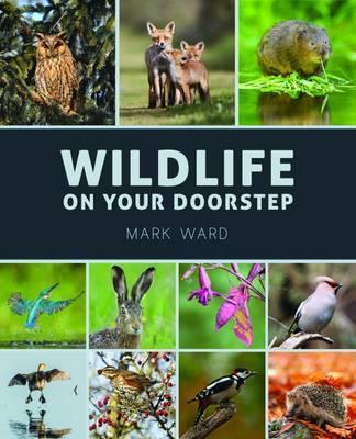 Wildlife on Your Doorstep