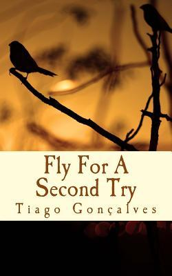 Fly for a Second Try