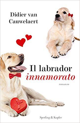 Il labrador innamora...