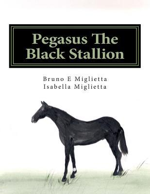 Pegasus the Black Stallion