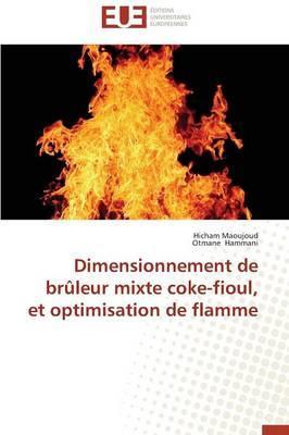 Dimensionnement de Bruleur Mixte Coke-Fioul, et Optimisation de Flamme