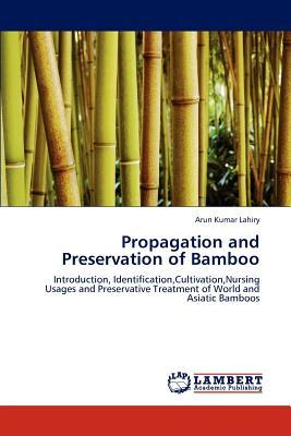 Propagation and Preservation of Bamboo