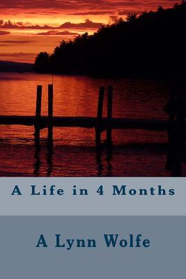 A Life in 4 Months