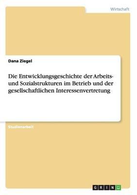 Die Entwicklungsgeschichte der Arbeits- und Sozialstrukturen im Betrieb und der gesellschaftlichen Interessenvertretung