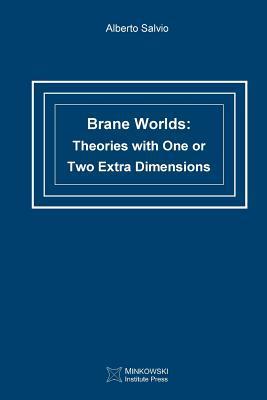 Brane Worlds