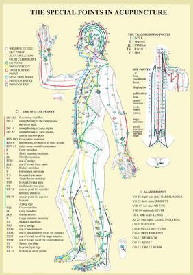 Special Points in Acupunture - A4