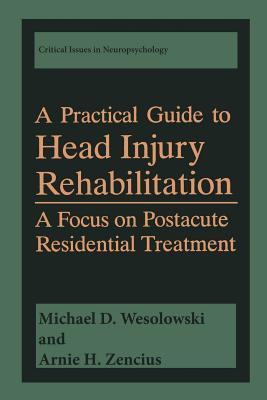 A Practical Guide to Head Injury Rehabilitation