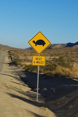 Turtle Crossing - Next 6 Miles Sign Journal