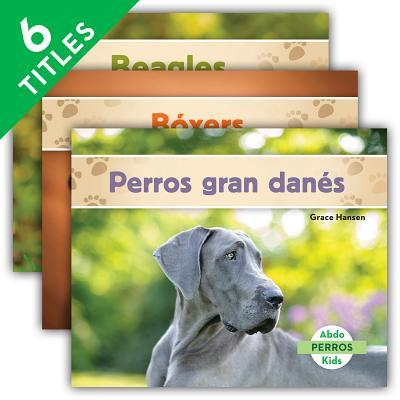 Perros / Dogs