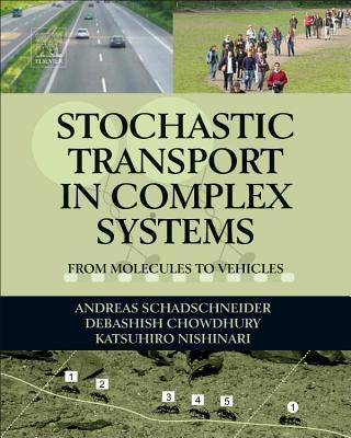 Stochastic Transport in Complex Systems