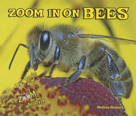 Zoom In On Bees