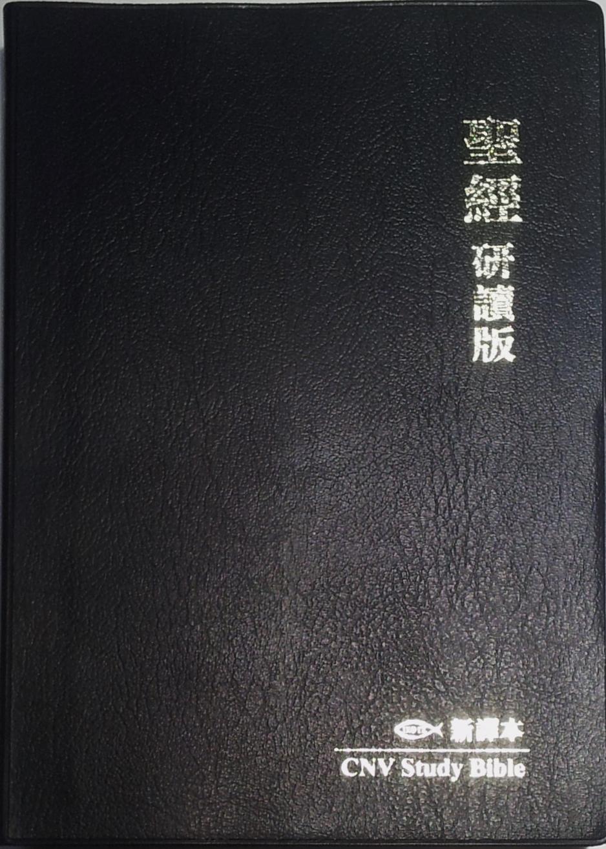 聖經研讀版