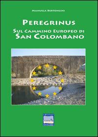 Peregrinus. Sul cammino Europeo di San Girolamo