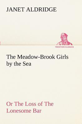 The Meadow-Brook Girls by the Sea Or The Loss of The Lonesome Bar