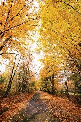 Fall Foliage Walking Path Journal