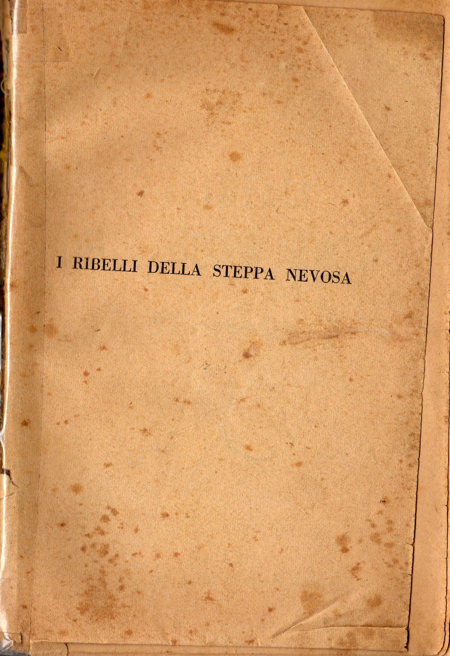I ribelli della steppa nevosa