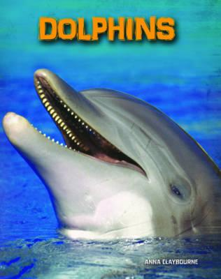 Dolphins (Living in the Wild