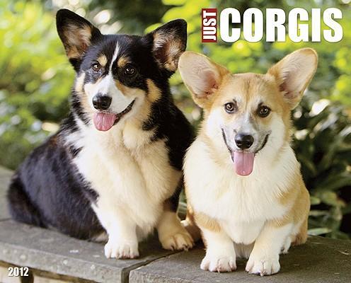 Just Corgis 2012 Calendar