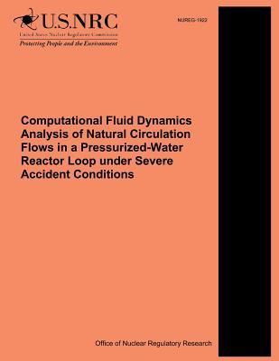 Computational Fluid Dynamics Analysis of Natural Circulation Flows in a Pressurized-water Reactor Loop Under Severe Accident Conditions