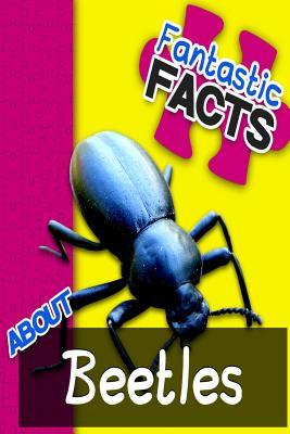 Fantastic Facts About Beetles